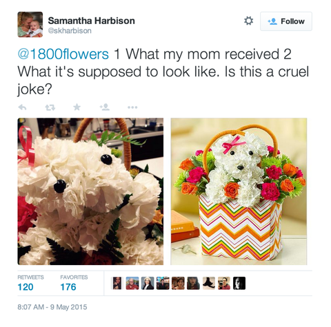 15 Photos Of 1 800 Flowers Disappointing Pretty Much Every Mom On Earth