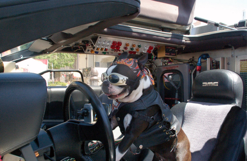 Motor vehicle, Mode of transport, Steering part, Steering wheel, Car seat, Car seat cover, Vehicle door, Head restraint, Windshield, Automotive mirror,
