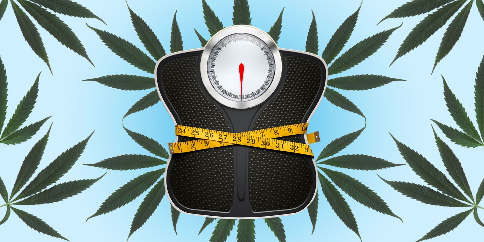 Can Marijuana Really Help Treat Anorexia?