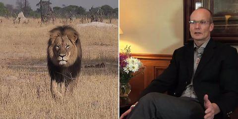 Lion, Glasses, Organism, Masai lion, Coat, Photograph, Big cats, Felidae, Suit, Terrestrial animal,