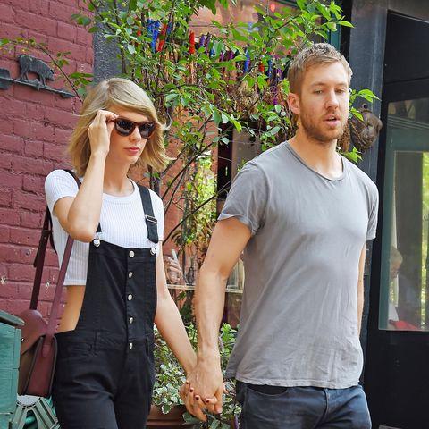 True Love Lives: Watch Calvin Harris Babysitting Taylor Swift's Cats