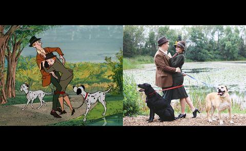 Dog breed, Dog, Carnivore, Vertebrate, Mammal, Sporting Group, Companion dog, Working animal, Hunting dog, Canidae,