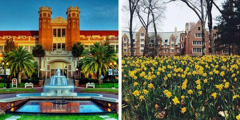 Plant, Facade, Real estate, Landmark, Woody plant, Garden, Petal, Flowering plant, Fountain, Water feature,