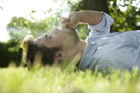Grass, Shoulder, People in nature, Sunlight, Grassland, Grass family, Meadow,