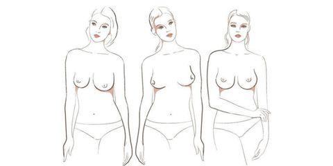 Skin, Shoulder, Chest, Joint, White, Line, Waist, Trunk, Elbow, Organ,