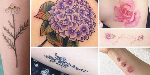 Petal, Flower, Pink, Purple, Flowering plant, Violet, Lavender, Pattern, Rose order, Hybrid tea rose,