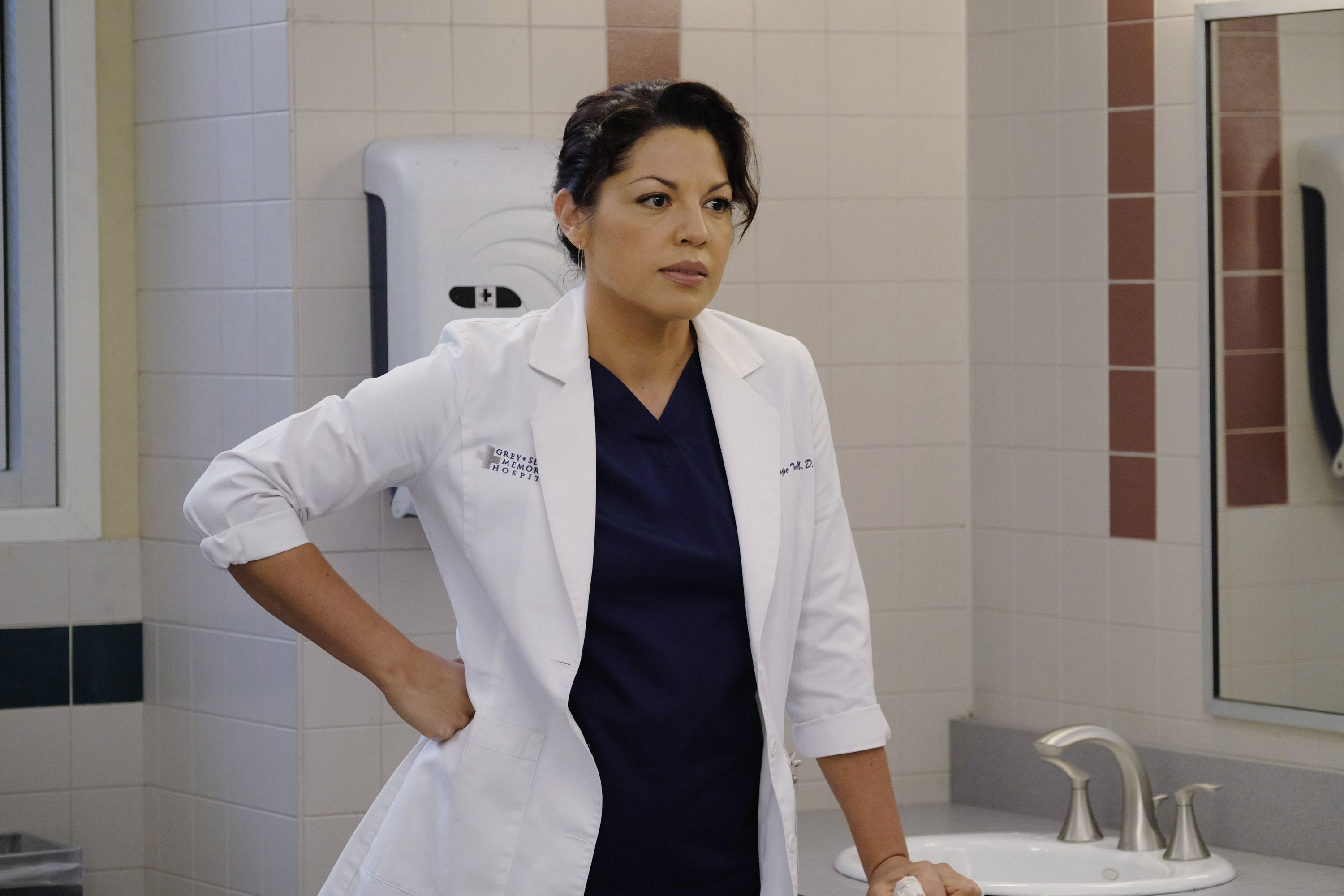 Sara Ramirez Leaving Grey\u0027s Anatomy - Reasons She Will Be Missed