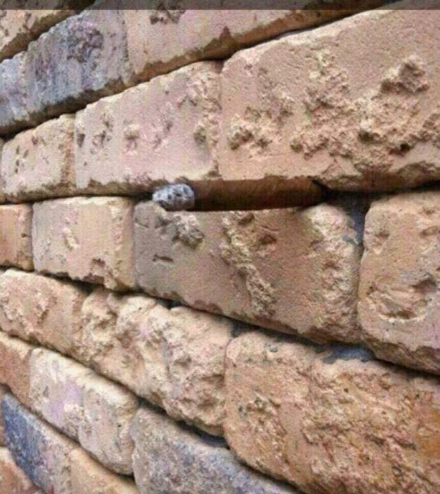 This Brick Wall Optical Illusion Is the New Dress