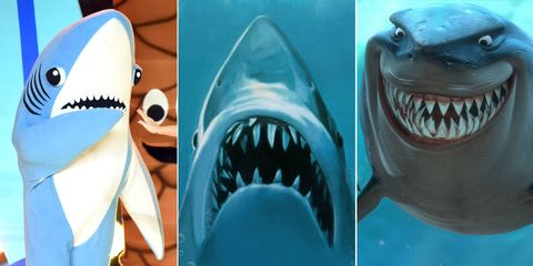 Vertebrate, Tooth, Lamniformes, Shark, Cartilaginous fish, Great white shark, Jaw, Lamnidae, Requiem shark, Carcharhiniformes,