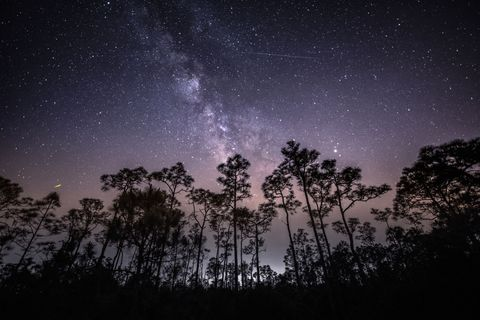 The Meteor Shower of the Decade Is Coming Next Week. Here's How to See It.