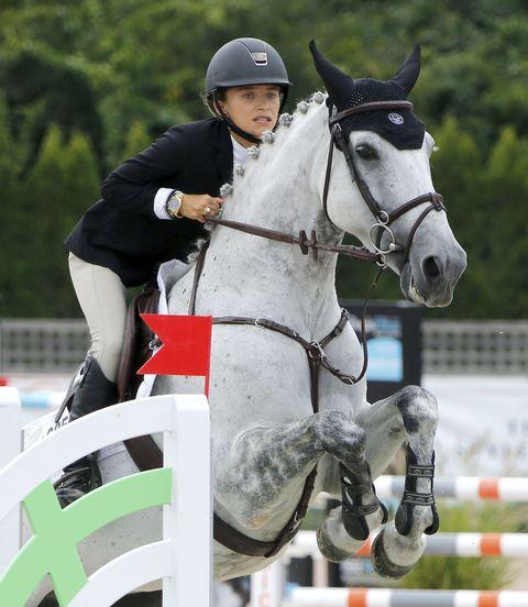 Bridle, Halter, Helmet, Vertebrate, Jockey, Horse supplies, Recreation, Shoe, Horse, Show jumping,
