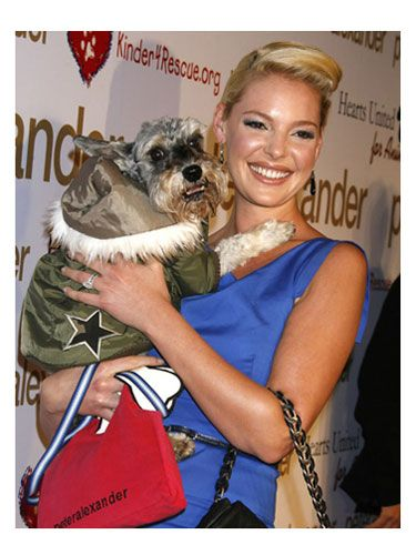 This <i>Grey's Anatomy</i> actress always looks fashionably fierce, so we're not surprised her dog is dressed like a star!