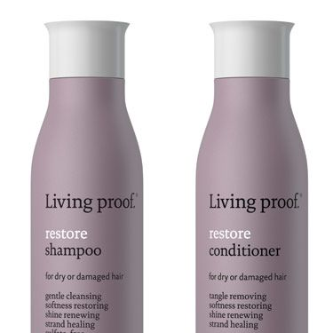 Dry, brittle ends look like they're begging for a haircut&#x3B; so a moisturizing shampoo and conditioner can buy you extra weeks—maybe even months—between trims. The latest from Living Proof, a line developed by MIT scientists, contains a special molecule called PolyFluoroEster that smoothes, hydrates and strengthens each strand.  