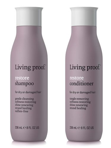 "Dry, brittle ends look like they're begging for a haircut; so a moisturizing shampoo and conditioner can buy you extra weeks—maybe even months—between trims. The latest from Living Proof, a line developed by MIT scientists, contains a special molecule called PolyFluoroEster that smoothes, hydrates and strengthens each strand.    <br /><br />  <p><b>Try</b>: Living Proof Restore Shampoo and Conditioner, $28 each, <a href=""http://www.livingproof.com/buy/restore-shampoo""target=""_blank"">livingproof.com</a></p>"