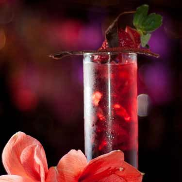 <i><br />2 lime wedges<br />