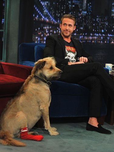 Ryan and his adorably mohawked pooch George are inseparable. He's been spotted walking George everywhere, carrying him up an escalator, and even escorting him on <i>Late Night with Jimmy Fallon</i>. So. Freaking. Cute.