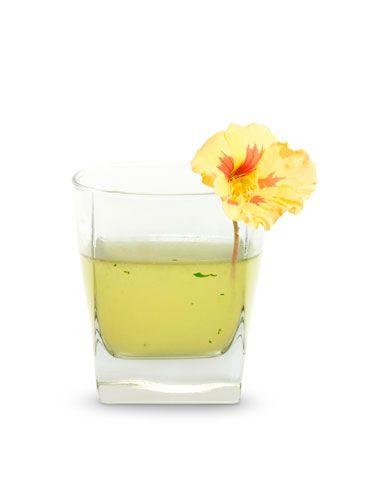 <i>2 oz. Blue Ice Organic Wheat Vodka<br /> 1 oz. agave nectar<br /> 1 oz. lemon juice<br /> 5 mint leaves<br /> Garnish: lemon zest</i><br />  Tear mint into a shaker. Add ice, vodka, agave nectar, lemon juice, and shake vigorously. Strain into a cocktail glass and garnish with a lemon zest.