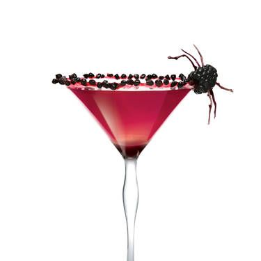 """<i>1 oz. X-Rated Fusion Liqueur½ oz. SKYY Vodka<br /><br />1½ oz. black raspberry liqueur<br />3 blackberries<br /><br /></i> Muddle blackberries in a cocktail shaker. Add ice and remaining ingredients. Shake vigorously and strain into a martini glass.<br /><br /><i>Source: <a href=""""http://skyyvodka.com/"""" target=""""_blank"""">SKYY Vodka</a></i>"""