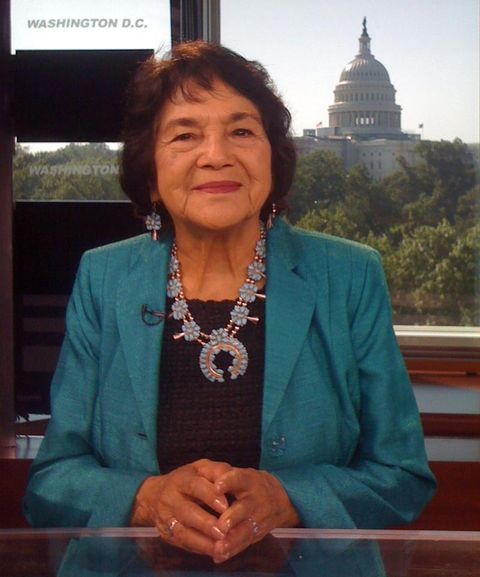<p>This Mexican-American civil rights activist is known for her advocacy for womens', wokers' and immigrants' right. She also co-founded the United Farm Workers and won numerous awards, including the Eleanor Roosevelt Award For Human Rights.</p>