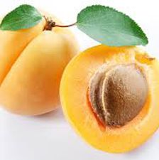 <p>Loaded with Vitamin A, B, C, and lycopene so it's no wonder there are plenty of beauty uses. Apricot oil is amazing for skin, it moisturizes quickly and does not leave an oily residue, even recommended for those who do have oily skin. The oil also contains Gamma Linoleic Acid, GLA, which is great for toning and firming skin. Due to the Vitamin A and E, apricot is also said to have healing properties for certain skin conditions such as eczema and slow signs of aging. You can make an apricot scrub at home, with the seeds of the apricot, to remove and exfoliate dead skin cells, unclog pores, and stimulate fresh skin cell growth. </p>