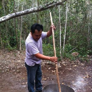 "<p>This <a href=""http://www.siankaantours.org/en/the-chewing-gum-a-mayan-legacy/"" target=""_blank"">tour</a> takes you throw a small village to see the process of making chewing gum. You also have the opportunity to meet Mayan families and try vino Maya, a typical Mayan wine.</p>"