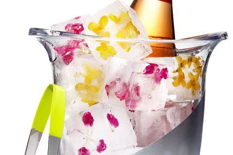 Fill an ice-cube tray about halfway with water, then add flower tops or petals. Put the tray in the freezer until cubes are solid, then top off with more water. Freeze the cubes overnight so they don't break.