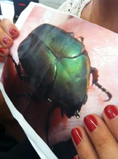 3. This beetle. He inspired the greenish-gold makeup at Kenneth Cole's spring 2014 show.