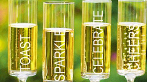 Nothing disguises a $4 bottle of champagne like fancy-bitch glassware. Celebrate! Contemporary Champagne Flutes Set of 4, $54 http://www.davidsbridal.com/Product_Celebrate!-Contemporary-Champagne-Flutes-set-of-4-CB3668-4_Reception-and-Favors-Wedding-Reception-Toasting-Flutes