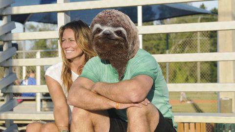 Sitting, Love, Hug, Fence, Romance, Marine mammal, Mesh, North american river otter,