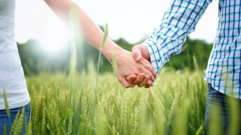 Grass, Finger, Agriculture, Plaid, Denim, Field, People in nature, Wrist, Interaction, Flowering plant,
