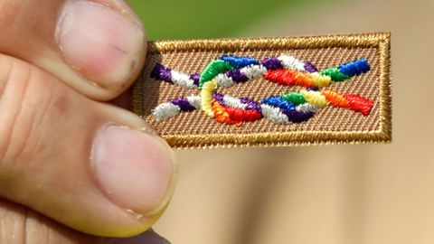 Gay Scouts