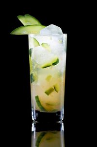 <p>1 1⁄2 parts Pucker® Citrus Squeeze™ Vodka.<br />3 Slices of Cucumber<br />Juice of Half a Lime<br />2 parts Ginger Ale</p>