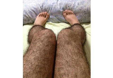 Body Hair: Hairy Female Legs - Art of Andreas Avester | 333x480
