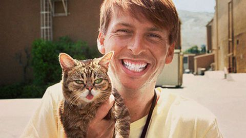 Human, Skin, Felidae, Small to medium-sized cats, Whiskers, Tooth, Cat, Carnivore, Facial expression, Jaw,
