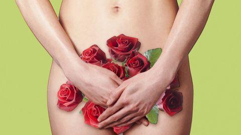 Petal, Red, Flower, Wrist, Pink, Garden roses, Flowering plant, Rose family, Rose order, Carmine,