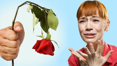 Finger, Lip, Hand, Leaf, Bangs, Petal, People in nature, Thumb, Botany, Eyelash,