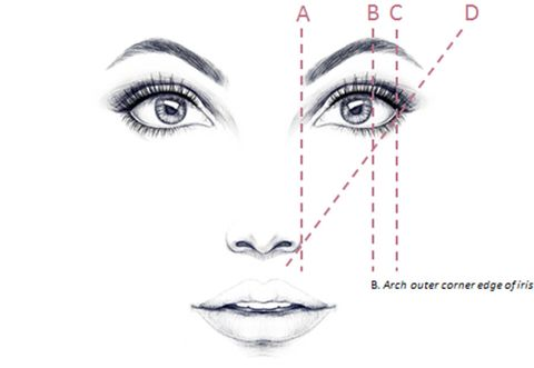 How To Shape Eyebrows on design diagram