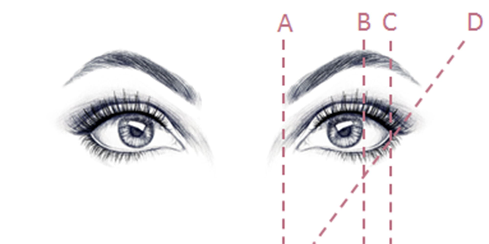 How To Shape Your Eyebrows Simple Shaping Rules Eye Brow