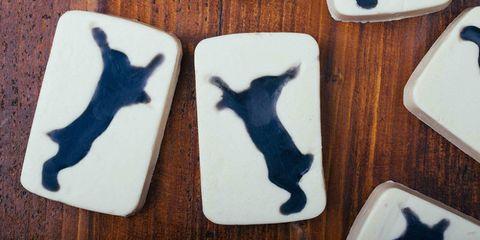 Lush Fighting Animal Testing soap