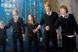 Weasley family in Harry Potter