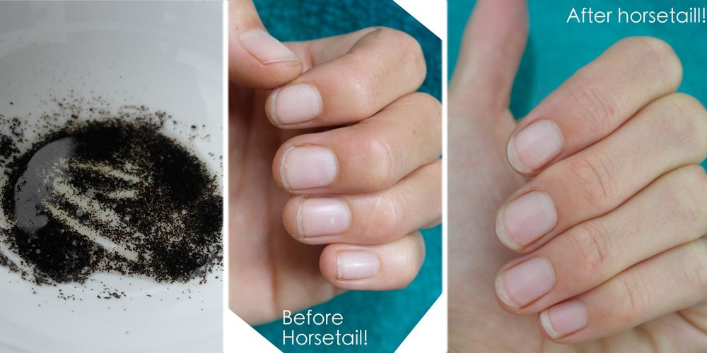 Horsetail for nail growth
