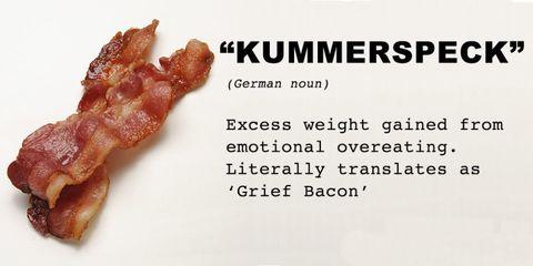 kummerspeck grief bacon  translation