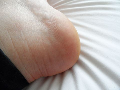 A Photo Diary Of Footner Socks The Genius Gross So