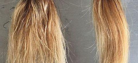 How Olaplex repairs damaged hair