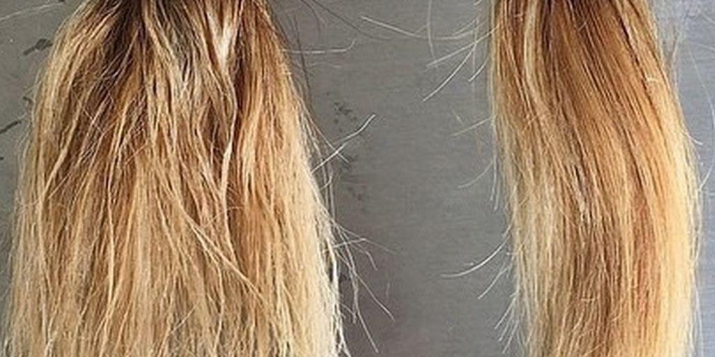 Fried Hair Repair Mask