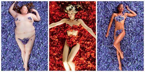 American Beauty recreation photo series