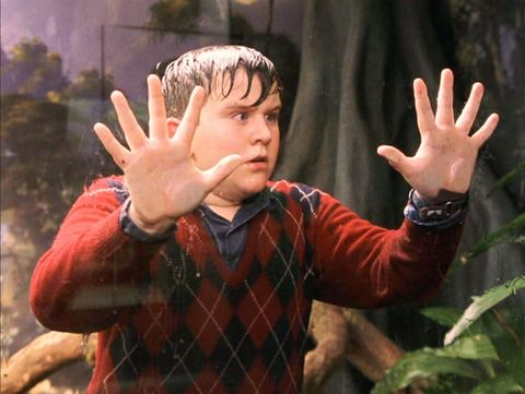 you'll never believe what harry potter's dudley dursley looks like now