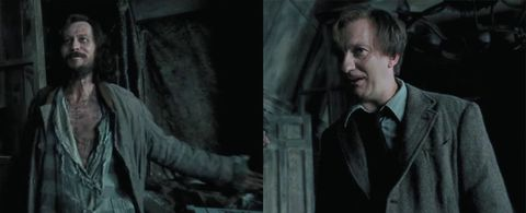 This Harry Potter theory about Sirius and Lupin is so sad it