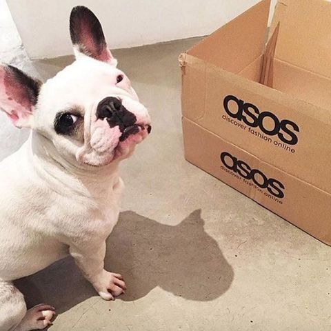 Dating a girl who loves ASOS