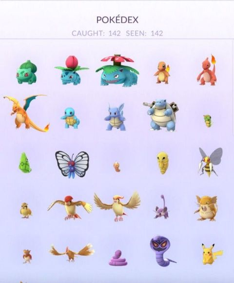 One Pokémon player has literally caught them all and we are JEALOUS